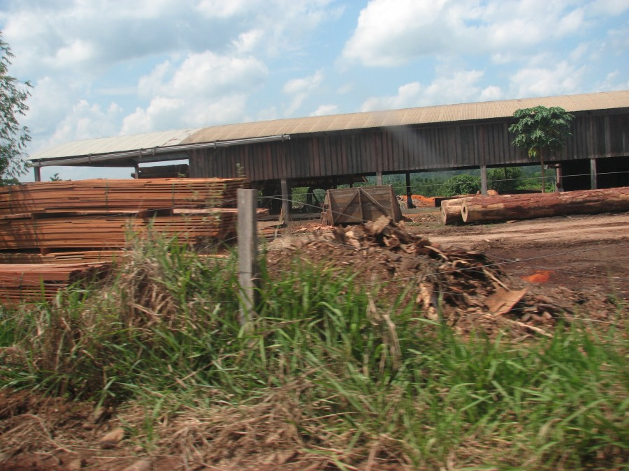 photo of logging mill