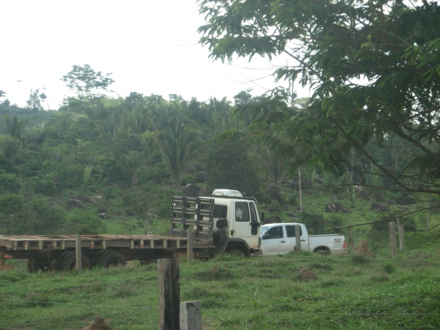 photo of logging truck