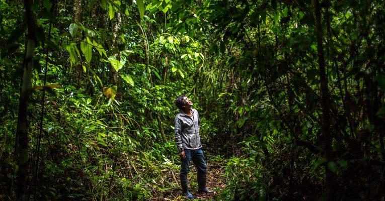 Premian fotografías peruanas que muestran la importancia de conservar la naturaleza para estar protegidos frente a los desastres